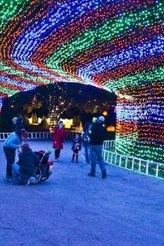 """Zilker Park Trail of Lights, considered """"Austin's most loved park"""""""