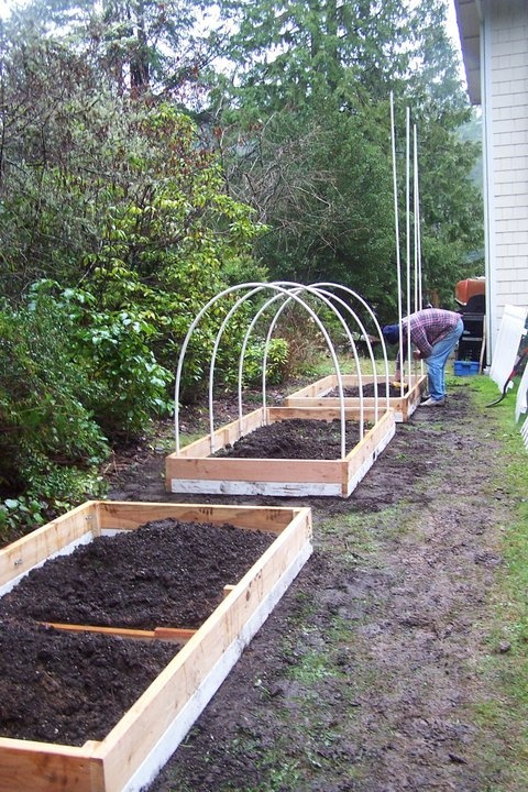 Raised beds with hoop covers Gardening equals THERAPY