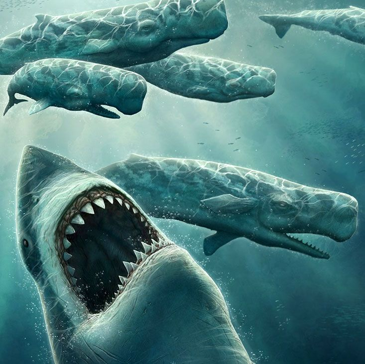 The modern ocean is a scary place, filled with barracuda, sharks, super-squids, and possibly Cthulhu. However, no matter what we find in the depths these d