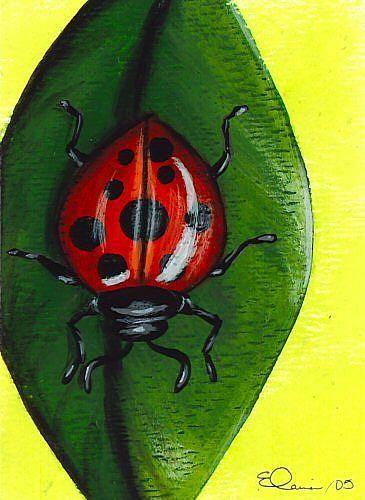 Art: Ladybug Ladybug by Artist Elaina Wagner