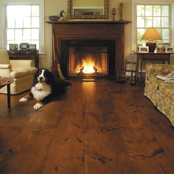 Dogs And Hardwood Floors: 14 Best Pets & Wide Plank Floors Images On Pinterest