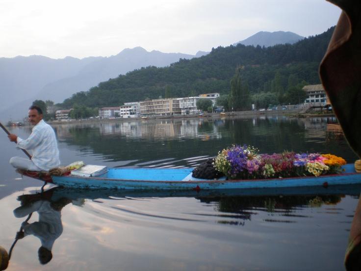 Srinagar flower shakara