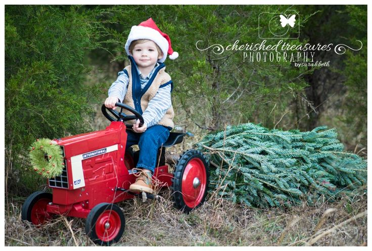 I borrowed this tractor from a friend at church. Used a small grove of pine trees behind the school where I teach as a location for Christmas sessions. Purchased a small tree from Walmart and cut the top of for the prop in this picture.