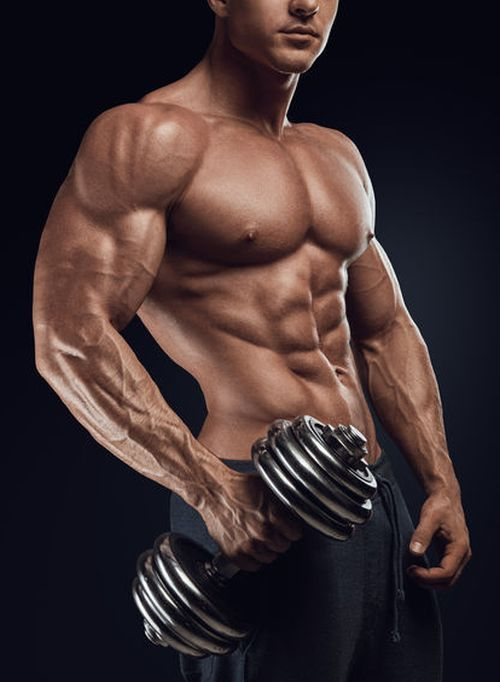 The Best Biceps Workout: 5 Exercises That   If you want to add size and strength…