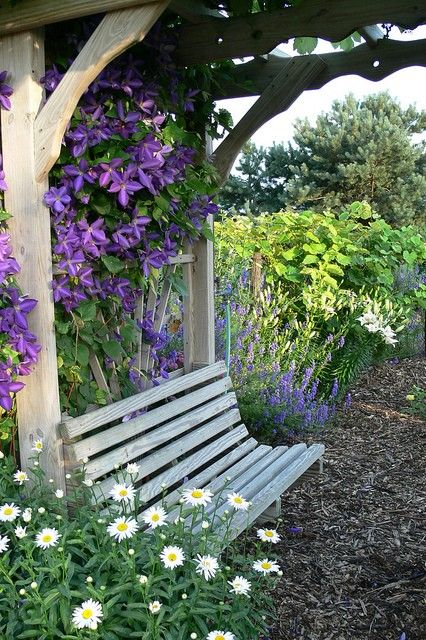 Love the bench for daydreaming while enjoying the purple clematis, shasta daisy and lilies down the fence.Gardens Ideas, Gardens Fence, Secret Gardens, Arbors, Clematis, Modern Gardens Design, Back Porches, Places, Gardens Benches