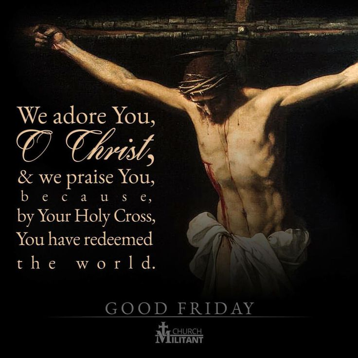 """Catholic Connect Vatican on Instagram: """"We adore you and we bless you, Lord Jesus Christ, here and in all the churches which are in the whole world, because by your holy cross you have redeemed the world. -St. Francis of Assisi Image via @churchmilitantcom #CatholicConnect"""""""