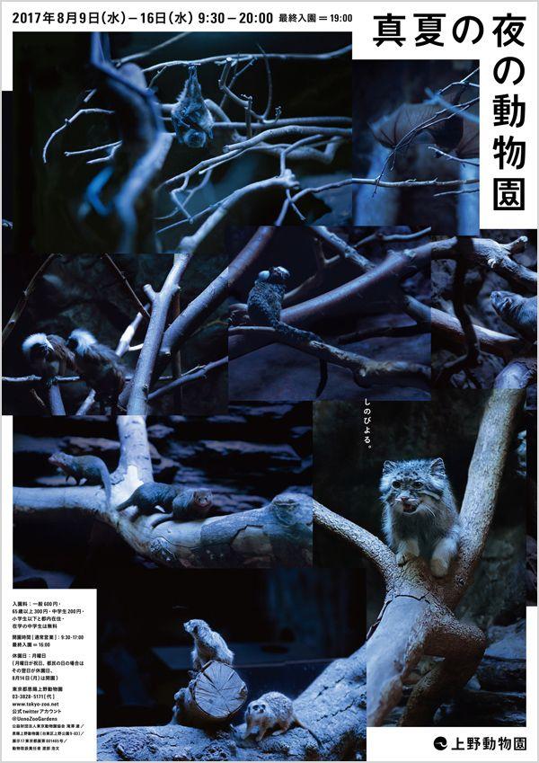 8/9-8/16 2017年「真夏の夜の動物園」   東京ズーネット