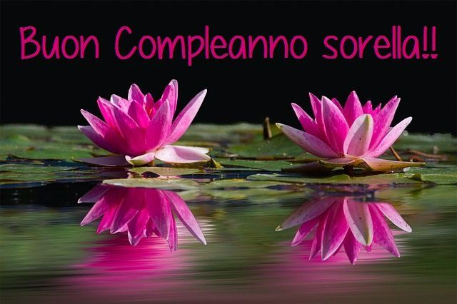 Buon Compleanno Sorella Compleanno Sorella Buon Compleanno