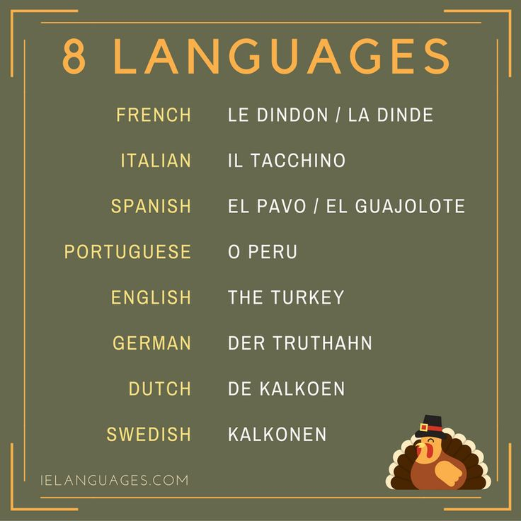 How to say turkey in 8 languages  Le dindon is a male turkey and la dinde is a female turkey in French. La dinde also refers to turkey meat.  El guajolote is used in Mexico.