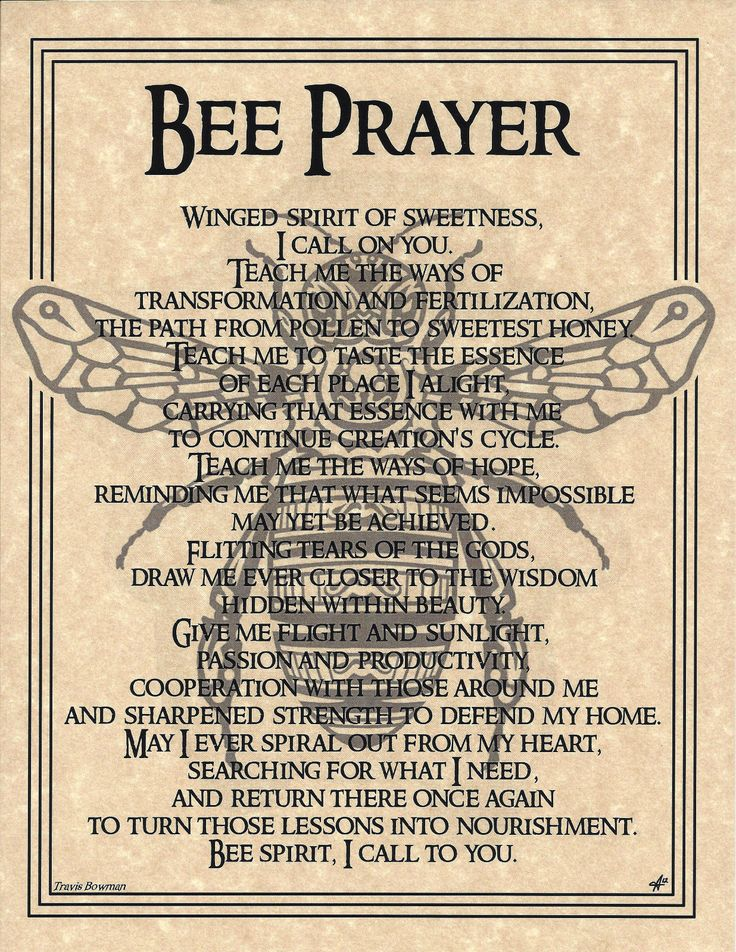 604 Best Spiritual Energy Images On Pinterest Book Of Shadows