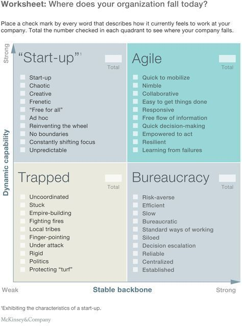 Image result for agile company structure #ProjectManagementTemplates
