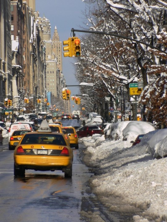 Inverno no Central Park: New York Cities, Big Apples, Big Yellow,  Hacks, Central Parks, York Taxi,  Taxicab, Cities Hands Pick, Winter