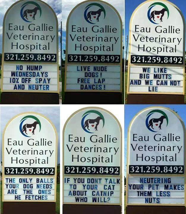 Vet's office promotes itself with mildly inappropriate messages on its sign