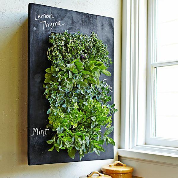 creative chalkboard wall planter