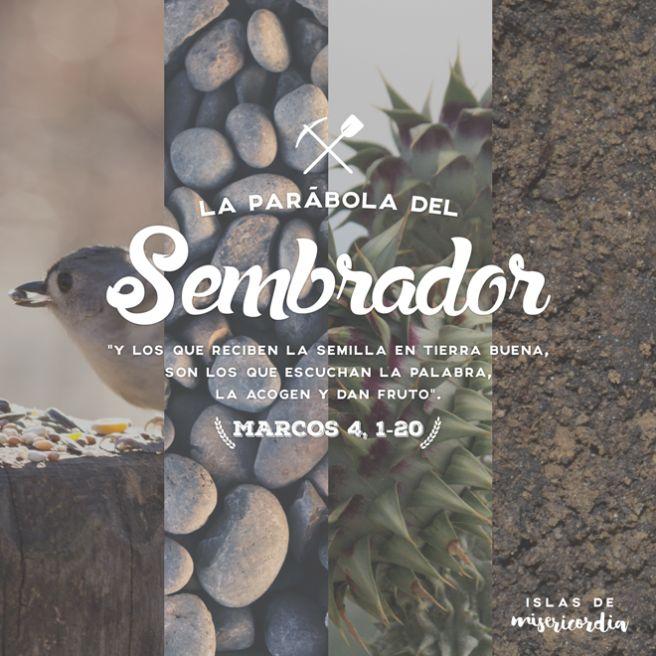 Islas de Misericordia by Sarai Llamas - Parábola del Sembrador (Marcos 4, 1-20) #Bible #Biblia #SaraiLlamas