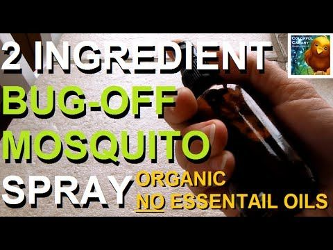 Take THIS Vitamin and You Will Be Mosquito Free All Summer Long! - DavidWolfe.com