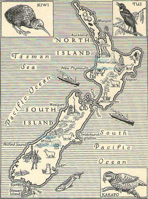 1950s Antique Vintage NEW ZEALAND animals map Products I love - Re-pinned by VintageTravel.co.nz
