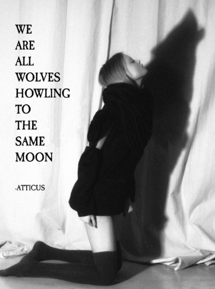 'Same Moon' @atticuspoetry #atticuspoetry #atticus #poetry #poem #quote #oldwords #wolves #moon #samemoon #denver #colorado #she #love #co