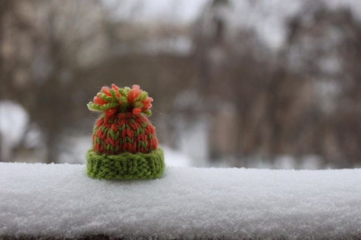 Knitted hat...waiting for spring