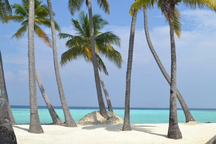 Going this summer!! Maledives - Maafushi
