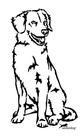 Duck Tolling Retriever - Hunde | Shop Amberdog® - Bernsteinkette als Zeckenhalsband zum Schutz vor Zecken