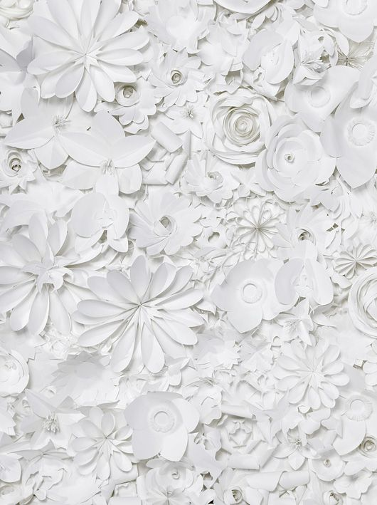 flowers: White Flowers, Sabrina Transiskus, Paper Art, White Christmas, White Paper, Paper Flowers, Paper Cutout, Paper Crafts, White Wall
