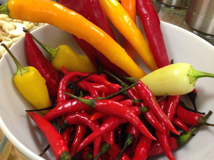 Chilipaste aus dem Thermomix › essenbelebt