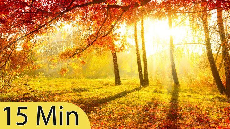 15 Minuters Super djup meditationsmusik: Koppla av kropp själ, Inre frid...