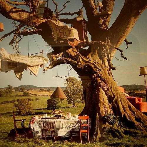 Wonderland : Outdoor Living, Dreams, Trees Houses, Alice In Wonderland, Tree Houses, Timwalker, Treehouse, Tim Walker, Teas Parties