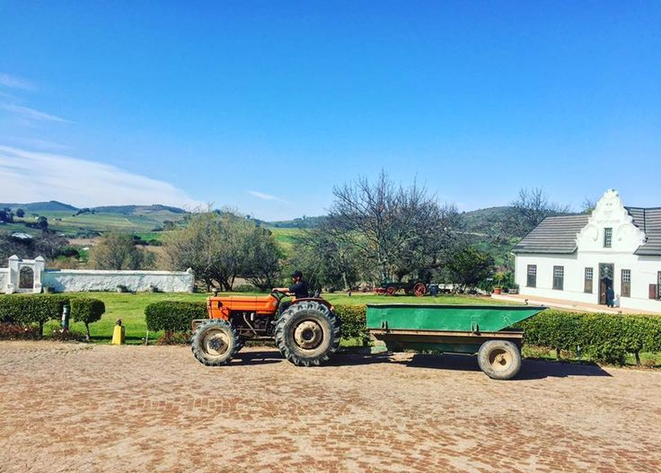 Hazendal Wine Estate, Stellenbosch, South Africa