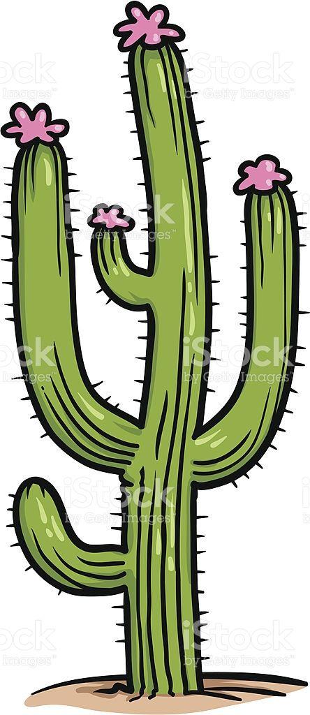 Cacto saguaro com flores cor-de-rosa vetor e ilustração royalty-free royalty-free