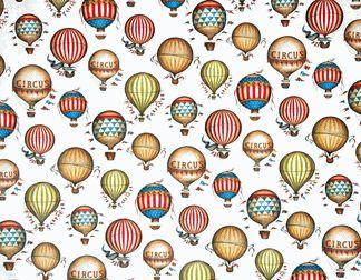 Fondo globos aerostáticos