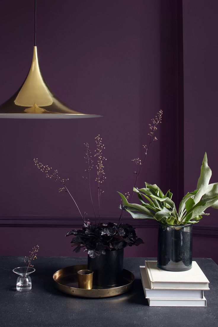 Dark purple wall paint - To Really Make Your Treasures Shine Display Them Against A Dark And Decadent Backdrop Dark Purple Wallsaubergine