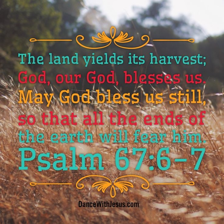The land yields its harvest; God, our God, blesses us. May ...