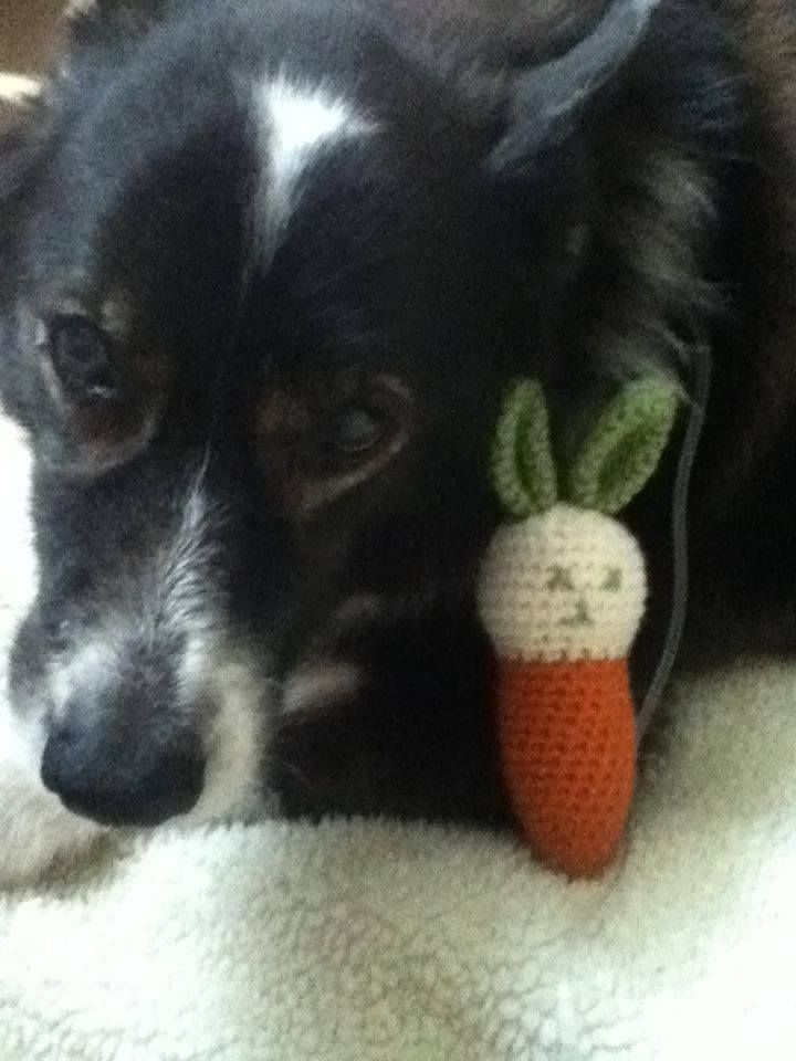 Bunny carrot catnip cat toy