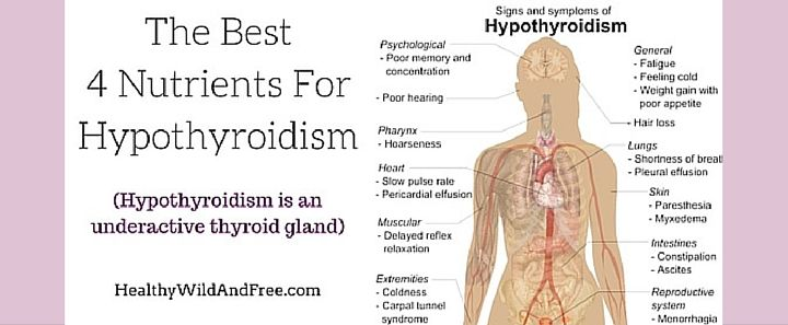 27 million Americans will be effected by a thyroid condition at some point in th…