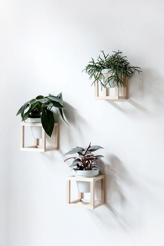Living with plants - DIY hanging plant holder