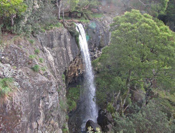 Preston Falls, Gunns Plains. Article for Think Tasmania.