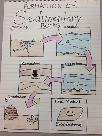 Sedimentary Rocks Anchor Chart Miller's Science Space