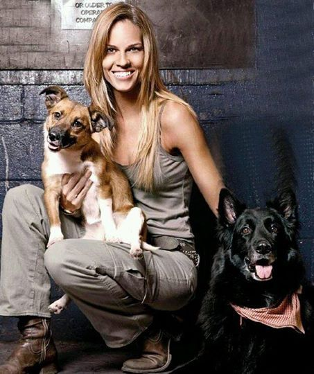 Hillary Swank et ses chiens Karoo et Rumi ♡