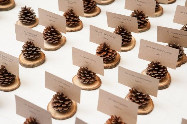 Love these pinecone place card holders. #eco #wedding #winter
