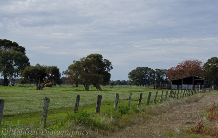L1M1AP3 Nikon D5100 Automode No flash 1/250sec f/8 ISO 100 - fence line drawing attention to the shed
