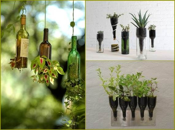 What is more elegant than keeping your plants is charming glass bottles