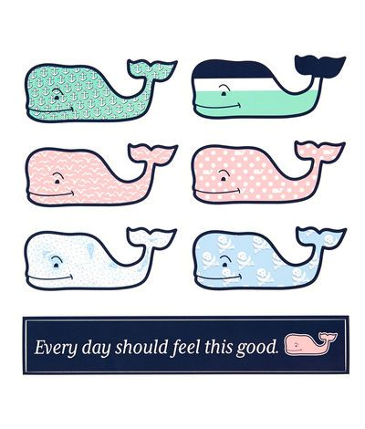 Whale Shop: 6-Pack of Assorted Whale Stickers $12.50