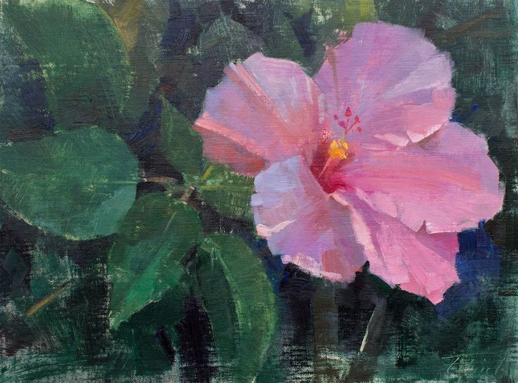 "A small one by Patrick Saunders from the Lighthouse ArtCenter's Plein Air Festival. Painted at The Society of the Four Arts in Palm Beach, Florida. ""Four Arts Floral"" (oil on linen, 9""x12"").  #patricksaunders #patricksaundersfineart #patricksaundersfinearts #saundersfinearts #pleinairstreaming #lighthouseartcenter #palmbeach #florida #hibiscus #floral #oilpainting #flowerpainting"