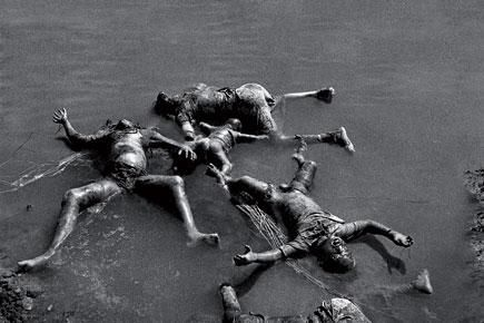 Bloated Dead Body In Water 17 Best images about 1...