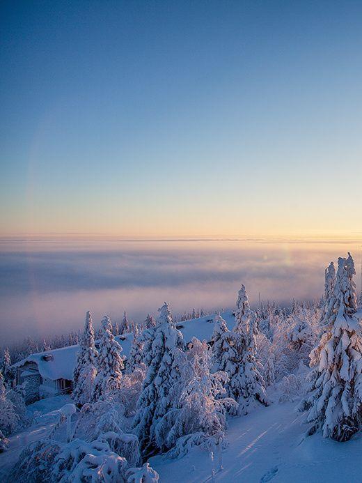 Dominant un paysage de taïga au nord de la Finlande, cet hôtel au look minimalo-lapon sait rendre très désirable l'hostile nature hivernale.