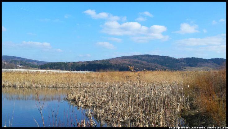 Skawce - stawy rybne - łabędzie #Skawa #Polska #Poland #małopolskie #powiat suski #Beskidy #Tarnawa Dolna #Skawce #Zembrzyce #Zarębki #zalew #zapora #Jezioro Mucharskie #Mucharz #zapora w Świnnej Porębie #rzeka Skawa #Łabędzie
