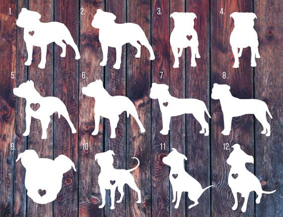 Pitbull decal pitbull sticker Love a bull car decal by SLrustic