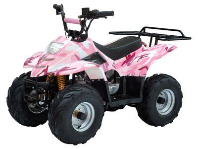 "ATV032 110cc ATV TAOTAO ATVs, Automatic Transmission, Air cooled, Front Double A Swing Arm Suspension, Front Drum/Rear Disc Brakes, 7"" Wheels, Rear Rack $469.00"